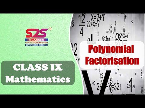 Class 9 Maths - Polynomials   Factorise - exercise 2.4   ncert  