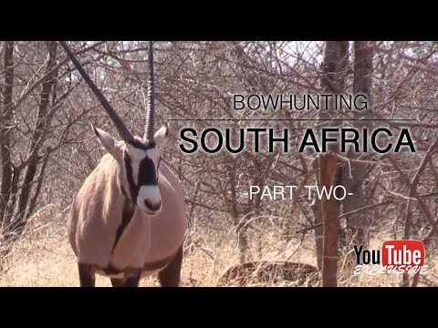 Bow Hunting South Africa 2017 – Part 2