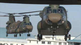 陸上自衛隊 第1ヘリコプター団「中央即応集団 第1ヘリコプター団 年頭編隊飛行訓練」