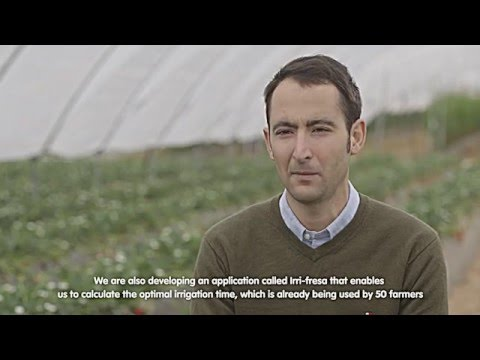 The Doñana Strawberry and Sustainable Water Management Project in 6 Minutes