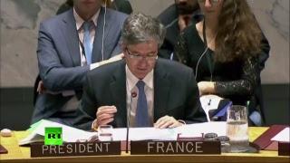 Заседание Совбеза ООН по химическому оружию в Сирии