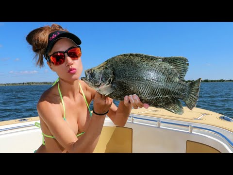 FISHING for TRIPLETAIL in Florida