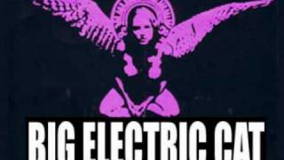 Big Electric Cat-Splinters
