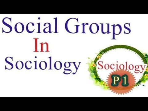 What is social Group and types of social group.