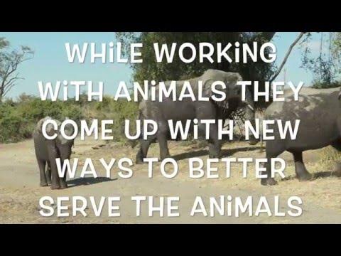 Animal Welfare Advocate VS Animal Rights Advocate