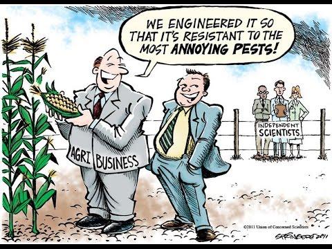 GMO is to Food as Keynesianism is to Economics