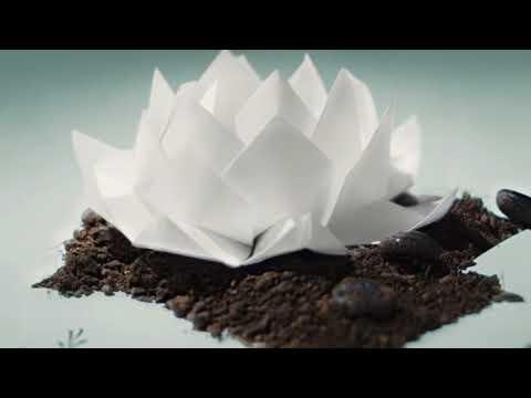 Oceans Ate Alaska- Hikari (Full Album)