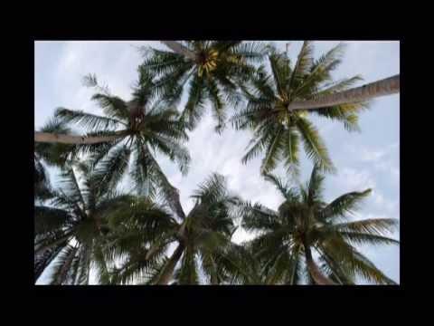 ISLAS DE BOHOL Y LUZON EN FILIPINAS