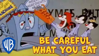 Animaniacs SING-ALONG  | Be Careful What You Eat | WB Kids