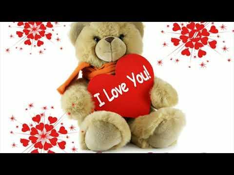 Teddy Day Whatsapp Status Teddy Day Status Teddy Day Best Wishes