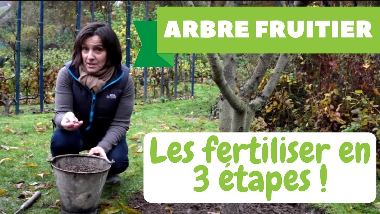Fertiliser les arbres fruitiers youtube for Arbre fruitier