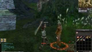 9Dragons Gameplay Footage