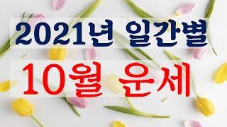 2021년 10월  무술월(戊戌月) 운세  [소혜사주]