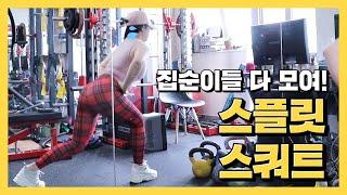 집순이도 할 수 있는 근력 운동, 스플릿 스쿼트! 근데…