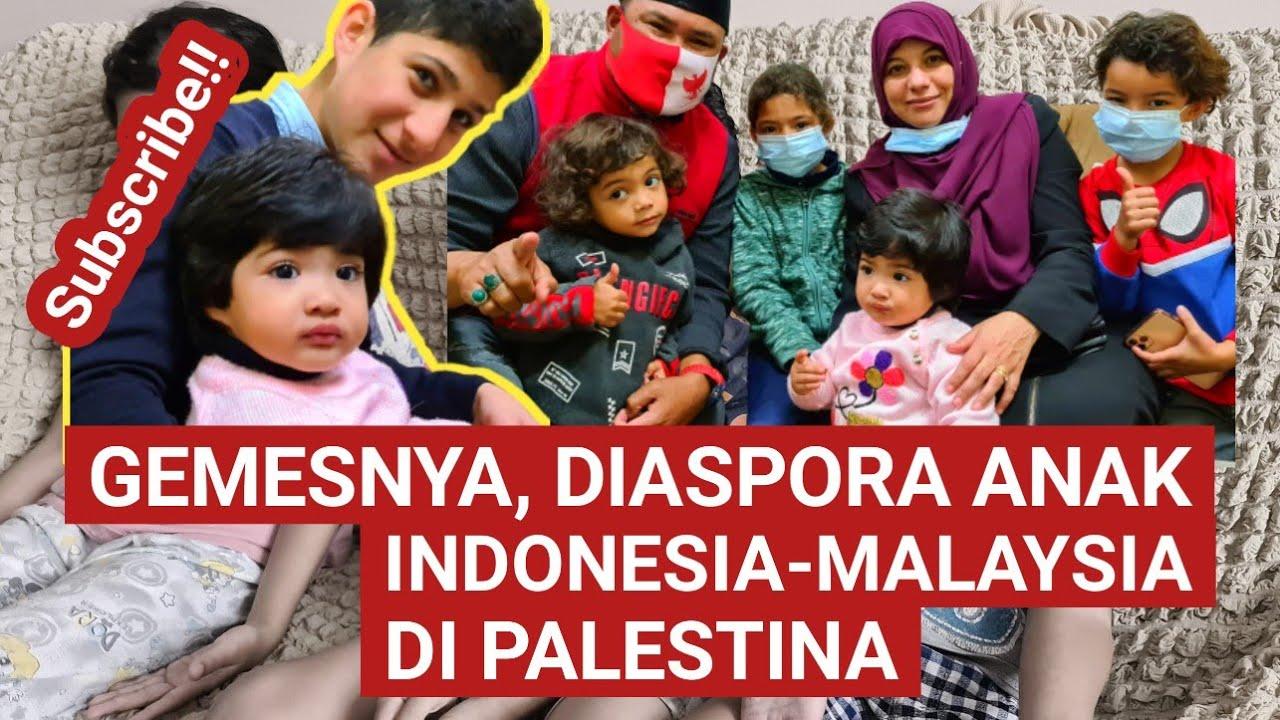 GEMES‼️DIASPORA ANAK INDONESIA-MALAYSIA DI  🅿️ALESTINA