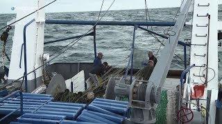 Jak wygląda poranek rybaków? | Zawodowcy w środę o 22:00 na Discovery Channel