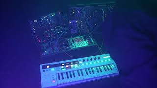 Warts and All Synth Jams with Putney Swope Ep. 3.... Tales from the Glitch Witch