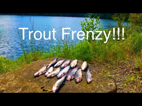 Trout Fishing North Fork | Oregon Fishing