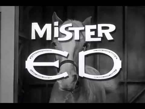 Mr  Ed   Intro Opening Theme