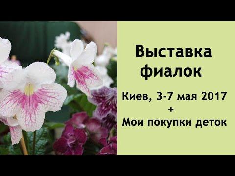 Садовый центр «ваш сад» закупает комнатные растения на крупнейших садовых аукционах мира у лучших производителей. Мы предлагаем самые здоровые экземпляры комнатных растений. В садовом центре «ваш сад» вы можете купить растения мелким или крупным оптом. Садовый центр « ваш.