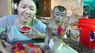 wow mom surprise dodo mom make mix fruit jelly for dodo dodo very happy