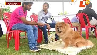 Dog show in Bhubaneswar