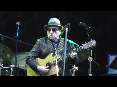 Van Morrison Performs At The Botanic Gardens Belfast - St Dominic's Preview
