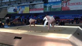 Чемпионат Украины по сумо (2015) г.Луцк