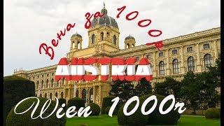 Вена за 1000 рублей