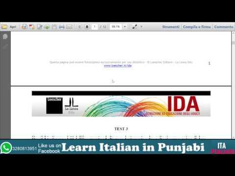 Test carta di  soggiorno  FAQ-SIMILE part 1 - in punjabi