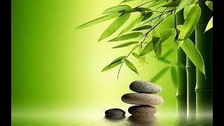 佛教音乐可以治愈你心脏的伤口第2部分(非常好) ||| 音樂佛教