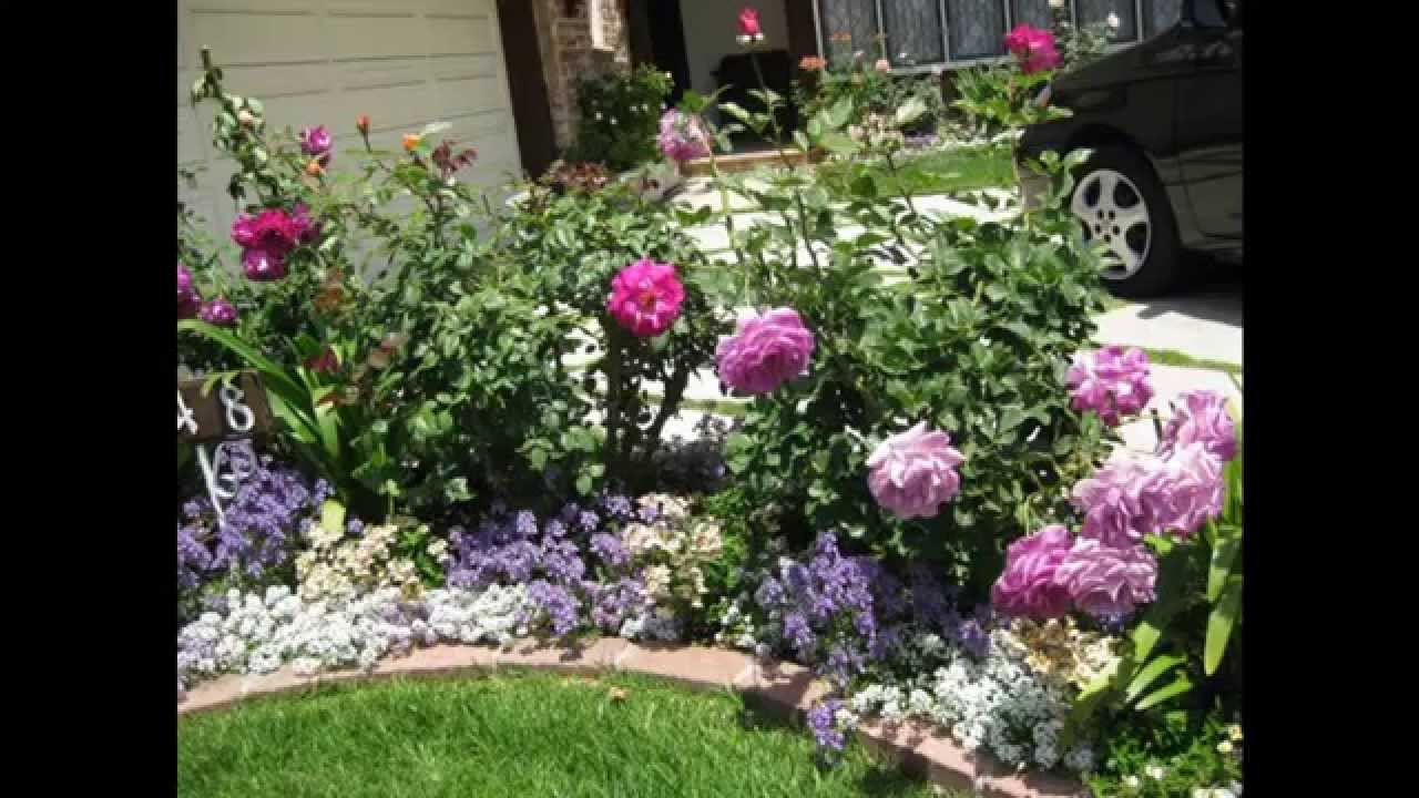 Simple Rose garden design decorations - YouTube