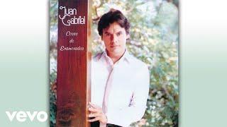 Juan Gabriel - Tú Me Dijiste Adiós (Cover Audio)