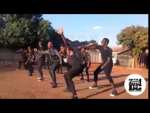 Jah Prayzah Emerina (Kutonga Kwaro Album 2017) Zimdancers Choreography