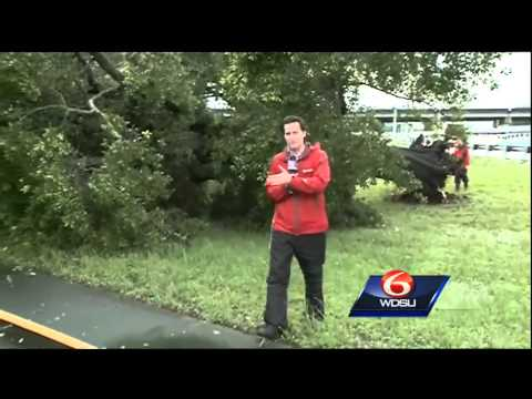 Tree knocked down in Lakeview, blocking traffic after severe weather pushes through Louisiana