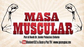 """🔴MASA MUSCULAR """"LO QUE DEBES SABER!!"""" por el Roeh Dr. Javier Palacios Celorio"""