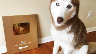 YOUTUBE GOLD PLAY BUTTON UNBOXING!