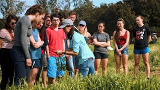 Stanford Educational Farm hosts students from across campus