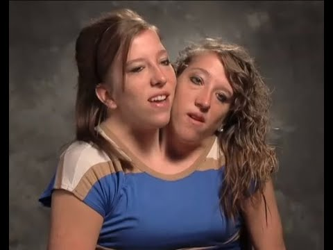 هل لك أن تتخيل تفاصيل حياتهما اليومية؟ (فيديو وصور)
