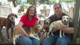 Fat Dog Named 'Kale Chips' Loses Weight, Gains New Family