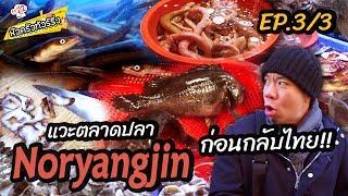 เที่ยวตลาดปลา-แล่สด-โครตอร่อย-หัวครัวทัวร์เกาหลี-ep-22-part-3-3
