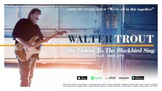 Walter Trout - She Listens To The Blackbird Sing (feat. Mike Zito) (We're All In This Together) 2017