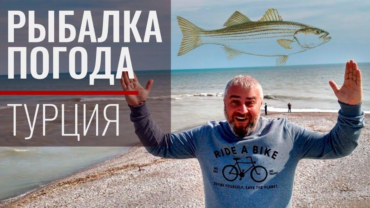 Рыбалка в Турции. Погода в Анталии. Февраль 2019 | формы туристических путешествий