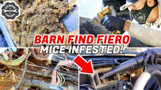 MICE INFESTED Car Restoration 1987 Pontiac Fiero GT Part 2 - Complete Disaster Car Detailing