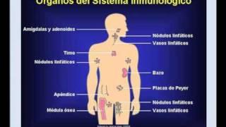 1. Como Prevenir el Câncer de Forma Natural (1ª parte)