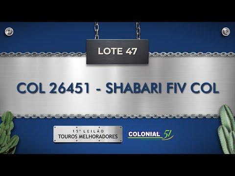LOTE 47   COL 26451