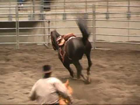 Download Sturzgefahr durch Halfterstrick beim Saddle Bronc Riding