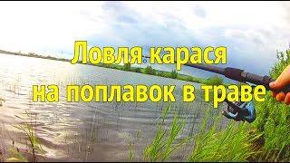 Ловля карася в траве в июне на поплавок. Рыбалка на карася