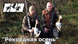 Охота на гусей 2017 ( осень) Hunting for a Goose 2017.