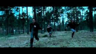 Harry Potter And The Deathly Hallows - Part 1 DVD Trailer